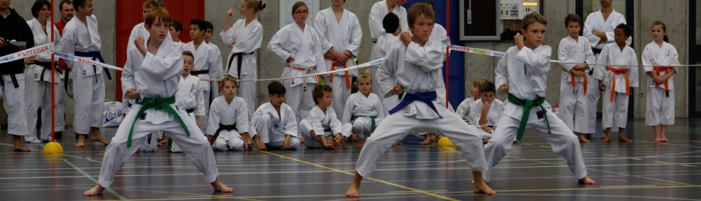 Koubukan Kampfkunstschule