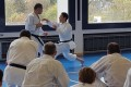 Karate-Lehrgang mit Shinji Nagaki 12. November 2016